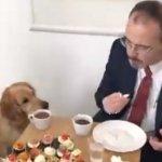 Snimak američkog ambasadora i NJEGOVOG PSA je nasmejao ljude na Tviteru, ali krije i jednu važnu poruku (VIDEO)