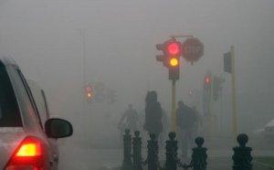 """Sa """"200 na sat"""" po magli divljali gradskim ulicama: Prst pred okom nije se video u Beogradu"""