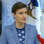Brnabić: Vlada stoji iza svake Vučićeve reči