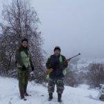 Zaraza stigla iz Bugarske: Afrička svinjska kuga se vratila u Srbiju