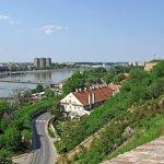 Amerikanac u karantinu u Novom Sadu: Srbi bi preživeli i nuklearnu katastrofu /video/