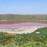 Jezero u Indiji, staro 50.000 godina, postalo ružičasto